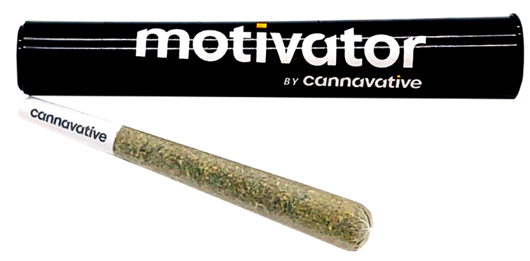 Motivator image